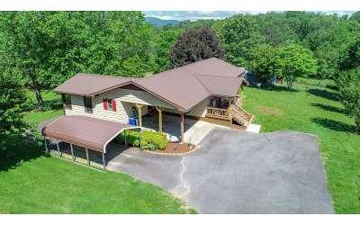 Fannin County Single Family Home For Sale: 26 Spearmint Lane