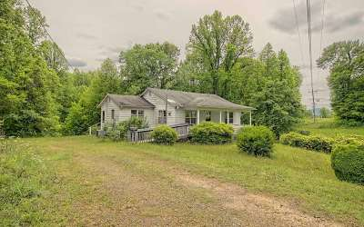 Hayesville Single Family Home For Sale: 234 Cold Branch Rd.