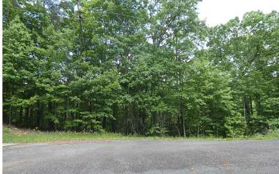 Ellijay Residential Lots & Land For Sale: 39, 40 Crabapple Ct
