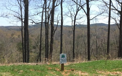 Ellijay Residential Lots & Land For Sale: Lt260 Carters View Drive