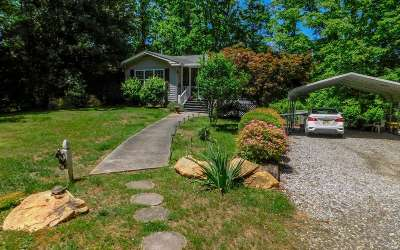 Blairsville Single Family Home For Sale: 113 Uga Drive