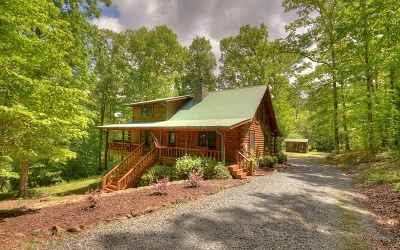 Blue Ridge Single Family Home For Sale: 479 Branch Creek Rd