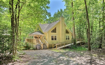 Blairsville Single Family Home For Sale: 110 Shadow Valley Road