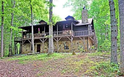 Blairsville Single Family Home For Sale: 11 Treasure Lane