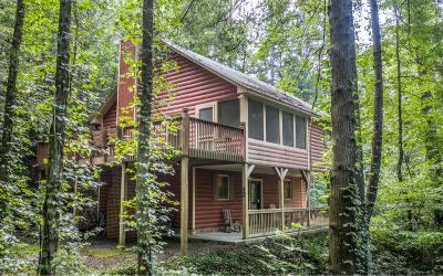 Ellijay Single Family Home For Sale: 1698 Conasauga Road