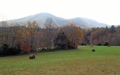 Brasstown Residential Lots & Land For Sale: 1368 Pine Log Church Road