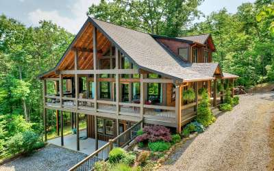 Blue Ridge Single Family Home For Sale: 355 Deer Crest Road