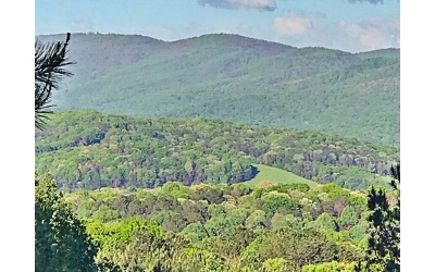 Ellijay Residential Lots & Land For Sale: Lt 15 Black Bear Ridge