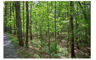 Murphy Residential Lots & Land For Sale: Berry Hill Road