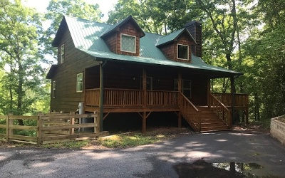 Blairsville Single Family Home For Sale: 193 Nonchalant Lane