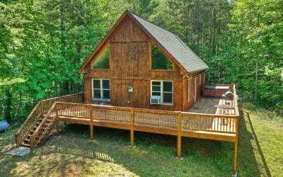 Ellijay Single Family Home For Sale: 95 Floyd Weaver Dr