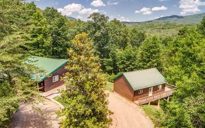 Ellijay Single Family Home For Sale: 414 Can Town Road