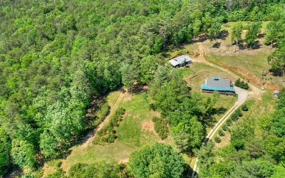 Ellijay Single Family Home For Sale: 201 Singing Spring Way