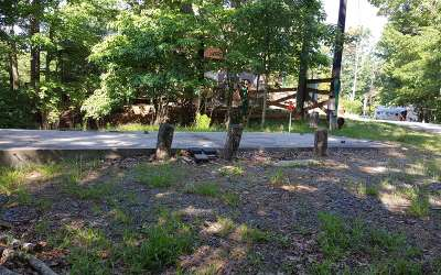 Ellijay Residential Lots & Land For Sale: 220 7th Street