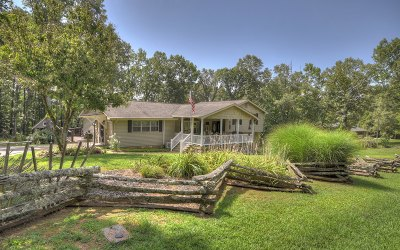 Blue Ridge Single Family Home For Sale: 381 Davis Road