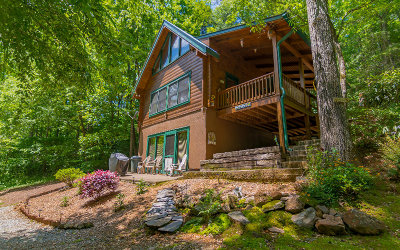 Gilmer County Single Family Home For Sale: 121 Farmstead Road