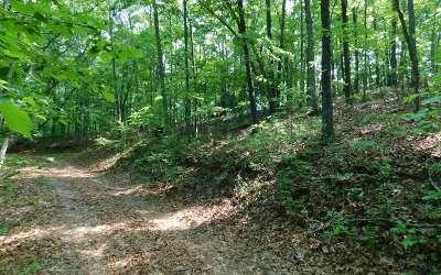 Brasstown Residential Lots & Land For Sale: Lot 7 Royal Oaks Trail