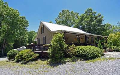 Mineral Bluff Single Family Home For Sale: 639 Douthit Road