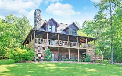 Fannin County Single Family Home For Sale: 254 Red Berry Ridge