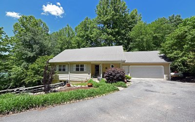 Blairsville Single Family Home For Sale: 259 Pinebrook Drive