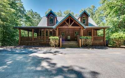 Mineral Bluff Single Family Home For Sale: 260 Cross Creek Rd