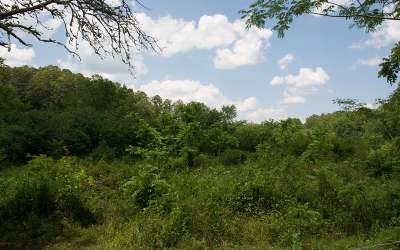 Residential Lots & Land For Sale: Elrod Circle