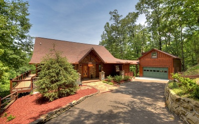 Ellijay Single Family Home For Sale: 169 Walnut Mountain Road
