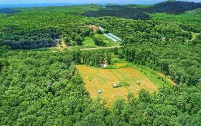Jasper Residential Lots & Land For Sale: 1790 Highway 136 E