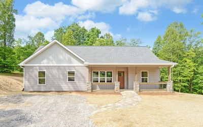 Blairsville Single Family Home For Sale: 49 Ledgestone Dr