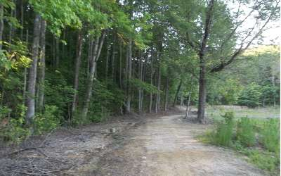 Ellijay Residential Lots & Land For Sale: 17 16 Amelia Dr