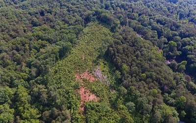 Ellijay Residential Lots & Land For Sale: 15.13 Craigtown Road