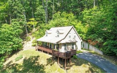 Blairsville Single Family Home For Sale: 177 Kim Street