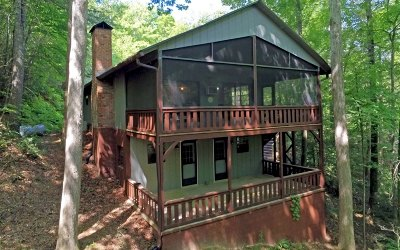 Blairsville Single Family Home For Sale: 78 Mulky Branch Lane