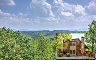 Mineral Bluff Single Family Home For Sale: 230 Evening Shade Trail