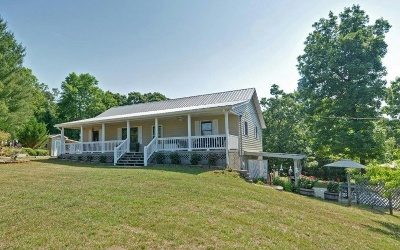 Mineral Bluff Single Family Home For Sale: 32 Queen Dr.