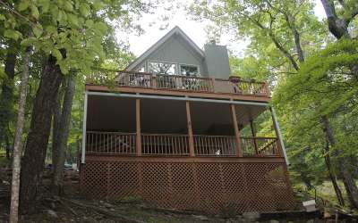 Jasper Single Family Home For Sale: 330 Little Hendricks Mtn