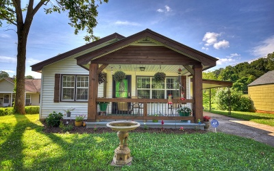 Blue Ridge Single Family Home For Sale: 176 Old Epworth Road