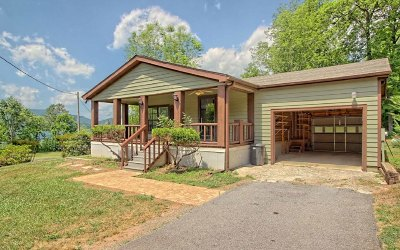 Towns County Single Family Home For Sale: 365 Lower Bell Creek Rd