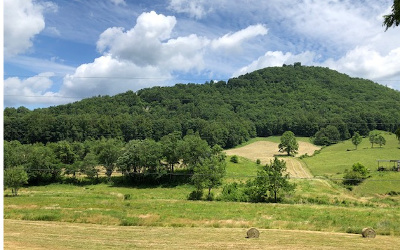 Hayesville Residential Lots & Land For Sale: 25 Ac Downings Creek Rd.