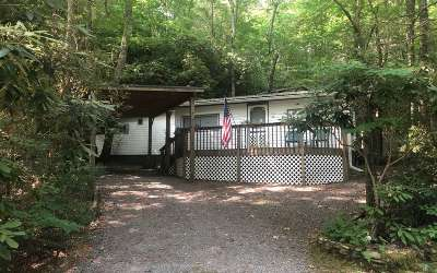 Hiawassee Single Family Home For Sale: 1312 Ruby Lake Drive