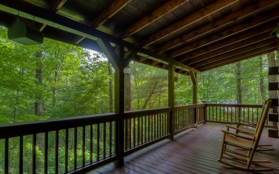 Ellijay Single Family Home For Sale: 247 Riverbend Trail
