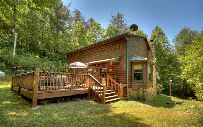 Mineral Bluff Single Family Home For Sale: 141 Angel Heart Lane