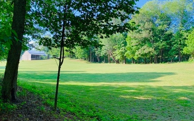 Ellijay Residential Lots & Land For Sale: Rackley Road