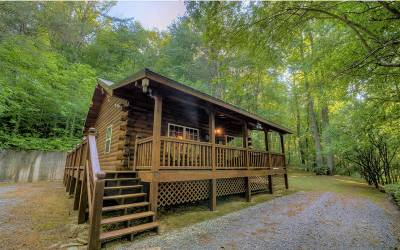 Ellijay Single Family Home For Sale: 104 Bates Drive