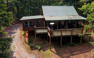 Blue Ridge Single Family Home For Sale: 236 Solar Drive