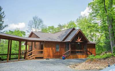 Ellijay Single Family Home For Sale: 120 Johnson Mill Court