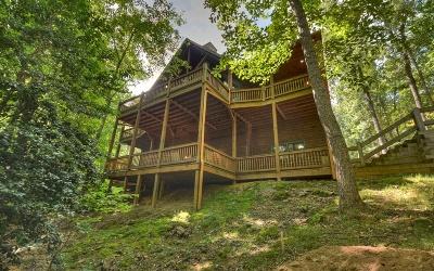 Mineral Bluff Single Family Home For Sale: 145 Stuart Ridge Road