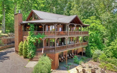 Blue Ridge Single Family Home For Sale: 973 Raccoon Road