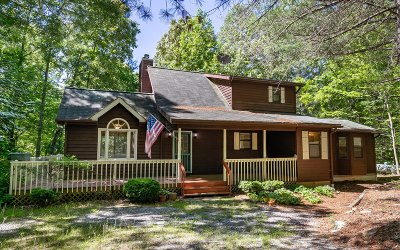 Blairsville Single Family Home For Sale: 195 Silver Maple Drive