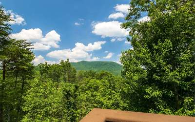 Ellijay Single Family Home For Sale: 25 Buena Vista Dr